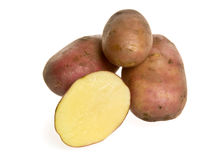 isolerad potatis Royaltyfri Foto