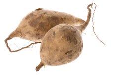 isolerad potatissötsak royaltyfri fotografi