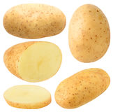 Isolerad potatoesamling royaltyfria bilder