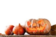 isolerad pumpawhite för bakgrund halloween Arkivbild