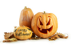 isolerad pumpawhite för bakgrund halloween Royaltyfria Bilder