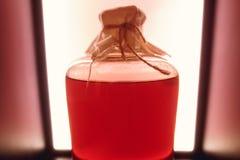 Isolerad röd lantlig flaska av sur likör Nationella drinkar Arkivbilder