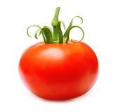 isolerad röd tomat royaltyfri foto