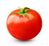 isolerad röd tomat fotografering för bildbyråer