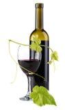 isolerad röd vit wine för bakgrund flaska Royaltyfria Bilder
