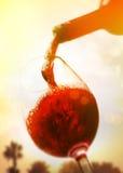 isolerad röd waitewine för om Royaltyfri Fotografi