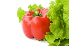 isolerad röd white för leafgrönsallatpeppar Arkivfoton