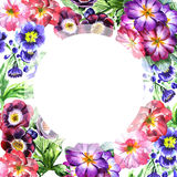 Isolerad ram för vildblommaaltfiolblomma i en vattenfärgstil Royaltyfria Foton