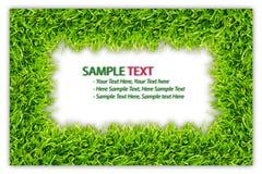 isolerad ramgräsgreen Royaltyfria Foton