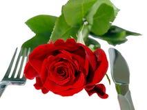 isolerad rose tabell för red Royaltyfri Foto