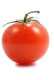 isolerad saftig tomat Arkivbilder
