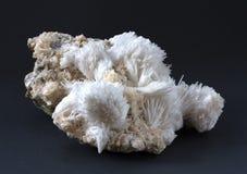 Isolerad Scolecite mineral som g?ras av sprejer av tunna prissmatic visarkristaller fotografering för bildbyråer