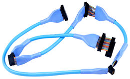 isolerad scsiwhite för kabel data Royaltyfri Fotografi