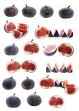 isolerad set för fig frukt Fotografering för Bildbyråer