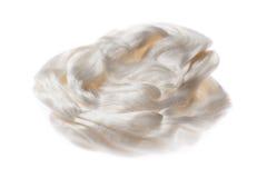 Isolerad silkeblast Royaltyfri Fotografi