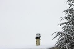 Isolerad snöig lampglas nära en gran med snö Royaltyfri Fotografi