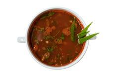Isolerad Soup Arkivbild
