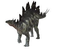 Isolerad Stegosaurus stock illustrationer