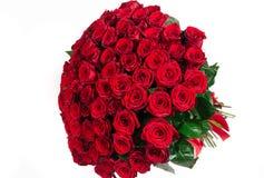 Isolerad stor bukett av den röda rosen som isoleras på vit Fotografering för Bildbyråer