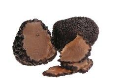 Isolerad svart tryffel - lyxig ingrediens arkivfoto