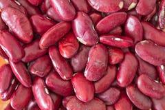 Isolerad textur för röda bönor Royaltyfria Bilder