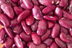 Isolerad textur för röda bönor Arkivfoto