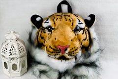 Isolerad tigerhuvudpåse Royaltyfri Fotografi