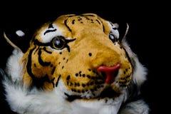 Isolerad tigerhuvudpåse Royaltyfria Bilder