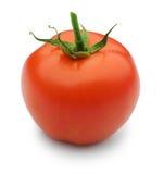 isolerad tomat Fotografering för Bildbyråer