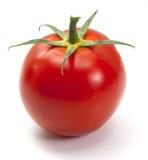 isolerad tomat Arkivbilder