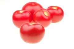 Isolerad tomat Arkivfoton