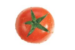 isolerad tomatoe Arkivbild