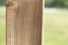 Isolerad träkolonn i parkera - arkitektonisk bakgrund royaltyfria bilder