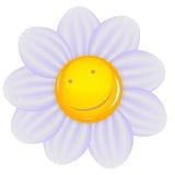 Isolerad tusensköna med ett glat leende. Vektor Arkivfoto