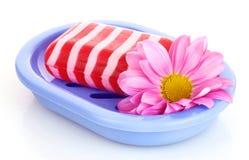 isolerad tvål för maträtt blomma Arkivbilder
