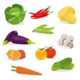Isolerad uppsättning av grönsaken Royaltyfri Bild