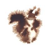 Isolerad vattenfärg för ekorre profil Royaltyfri Bild