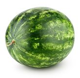 isolerad vattenmelonwhite Arkivfoton