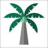 Isolerad vektorillustration för palmträd symbol Royaltyfri Illustrationer