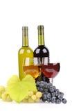 Isolerad vinflaska med exponeringsglas royaltyfri bild