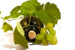 isolerad vit wine för bakgrund flaska Royaltyfria Foton