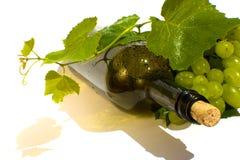 isolerad vit wine för bakgrund flaska Arkivfoto