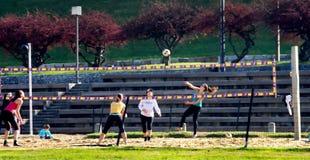 isolerad volleybollwhite för bakgrund strand Royaltyfri Bild