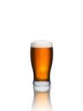 isolerad white för öl exponeringsglas Arkivbild