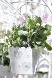 isolerad white för bakgrund blomkruka Fotografering för Bildbyråer