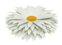 isolerad white för chamomile blomma stock illustrationer
