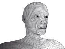 Isolerad wireframevektor för mänskligt huvud 3d Royaltyfri Fotografi