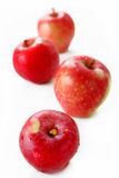 isolerade äpplen Arkivfoton