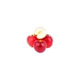 Isolerade äpplen för helhet och för en halva Royaltyfri Fotografi
