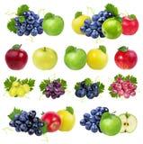 Isolerade äpplen och druvor Arkivfoto